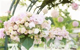 Weddings and Flowers wallpaper (1)