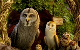 Legend of the Guardians: The Owls of Ga'Hoole 守卫者传奇(二)24