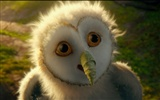 Legend of the Guardians: The Owls of Ga'Hoole 守卫者传奇(二)25