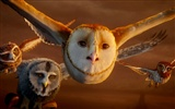 Legend of the Guardians: The Owls of Ga'Hoole 守卫者传奇(二)37