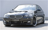Hamann BMW 5-series F10 - 2010 宝马
