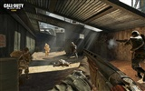 Call of Duty: Black Ops HD wallpaper (2) #14