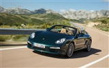 Porsche Boxster - 2009 HD wallpaper #1