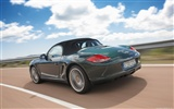 Porsche Boxster - 2009 HD wallpaper #5