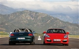 Porsche Boxster - 2009 HD wallpaper #8