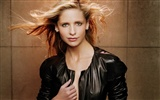 Sarah Michelle Gellar beautiful wallpaper (2) #28