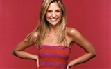 Sarah Michelle Gellar beautiful wallpaper (2) #32