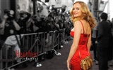 Heather Graham schöne Tapete