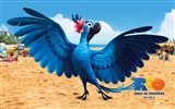 Rio 2011 wallpapers