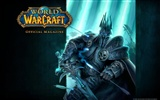 World of Warcraft Album Fond d'écran HD (2) #11