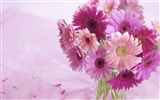 Widescreen wallpaper flowers close-up (33) #3
