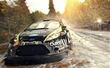 DiRT 3 HD wallpapers #2
