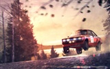 DiRT 3 HD wallpapers #10