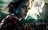2011 Harry Potter and the Deathly Hallows HD wallpapers #12