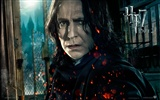 2011 Harry Potter and the Deathly Hallows HD wallpapers #15