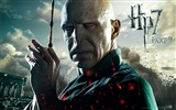 2011 Harry Potter and the Deathly Hallows HD wallpapers #16