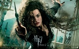 2011 Harry Potter and the Deathly Hallows HD wallpapers #18