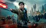 2011 Harry Potter and the Deathly Hallows HD wallpapers #20