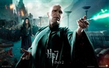 2011 Harry Potter and the Deathly Hallows HD wallpapers #21