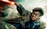 2011 Harry Potter and the Deathly Hallows HD wallpapers #22