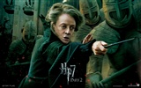 2011 Harry Potter and the Deathly Hallows HD wallpapers #24