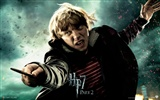 2011 Harry Potter and the Deathly Hallows HD wallpapers #26