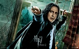 2011 Harry Potter and the Deathly Hallows HD wallpapers #27