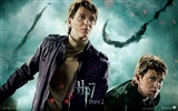 2011 Harry Potter and the Deathly Hallows HD wallpapers #28