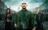 2011 Harry Potter and the Deathly Hallows HD wallpapers #29