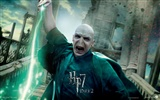 2011 Harry Potter and the Deathly Hallows HD wallpapers #30