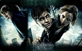 2011 Harry Potter and the Deathly Hallows HD wallpapers #31