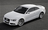 Audi A5 Coupe - 2011 HD wallpapers #7