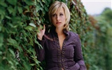 Allison Mack beaux fonds d'écran #11