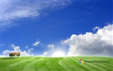 Windows 8 theme wallpaper (1) #2