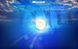 Windows 8 theme wallpaper (1) #4