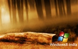 Windows 8 theme wallpaper (1) #8