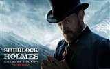 Sherlock Holmes: A Game of Shadows HD Wallpapers #9
