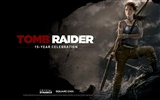 Tomb Raider 15-Jahr-Feier HD Wallpapers #1