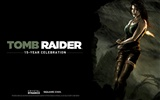 Tomb Raider 15-Jahr-Feier HD Wallpapers #2