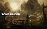 Tomb Raider 15-Jahr-Feier HD Wallpapers #3