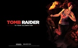 Tomb Raider 15-Jahr-Feier HD Wallpapers #4