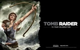 Tomb Raider 15-Jahr-Feier HD Wallpapers #5