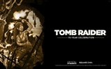 Tomb Raider 15-Jahr-Feier HD Wallpapers #6