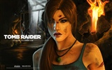 Tomb Raider 15-Jahr-Feier HD Wallpapers #7
