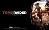 Tomb Raider 15-Jahr-Feier HD Wallpapers #8