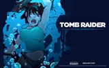 Tomb Raider 15-Jahr-Feier HD Wallpapers #9