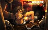 Tomb Raider 15-Jahr-Feier HD Wallpapers #10