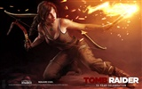 Tomb Raider 15-Jahr-Feier HD Wallpapers #11