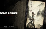 Tomb Raider 15-Jahr-Feier HD Wallpapers #14