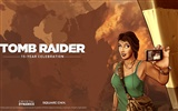 Tomb Raider 15-Jahr-Feier HD Wallpapers #15